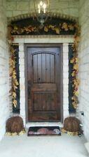 Rustic Arch Top Knotty Alder Single Entry Door