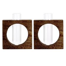 2pcs Reagenzglas Glasvase mit schäbigem Holzständer Blumentöpfe Gartendekor