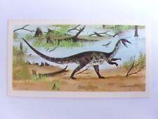 Brooke Bond Prehistoric Animals tea card 13. Coelophysis. Dinosaurs.
