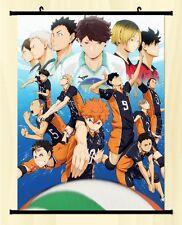 Haikyuu!! Shoyo Hinata Shonen Home Decor Poster Wall Scroll Anime Janpanese New