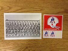 1974 New England Patriots Team Photo 5x7 NFL Football & Vintage Decal Plunkett