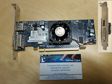 Scheda video Radeon HD6450 512MB PCI-E Video Card AMD HD 6450 637183-001