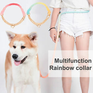 Head Collar Non-slip Wear-resistant Creative Colorful for Outing