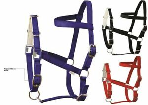 Soft Padded Nose Band Nylon Lunging Lunge Cavesson Headcollar 3 Colours Full Cob