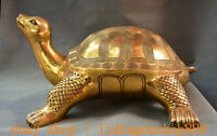 """20,8 """"Chine Laiton Cuivre Feng Shui Animal Tortue Tortue Longévité Statue"""