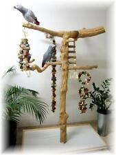 Freisitz, Papageienspielzeug, aus ORIGINAL Java Holz,Stamm aus Javaholz, 165 cm