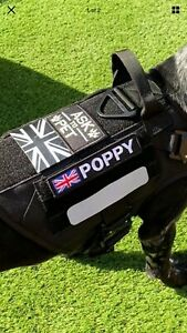 """1 X Embroidered  5""""X1"""" NamePatch Hook And Loop Canine Tactical  K9 Vest Harness"""