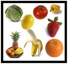 Frutas y Verduras - Divertido Cuadrado Grande Recuerdo Original Imán de Nevera -