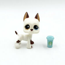 Littlest Pet Shop toys LPS Great Dane #577 white dog with Accessories