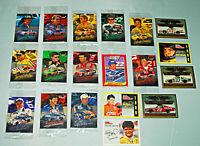 NASCAR Collectible 19 Driver Card Lot Gordon Wallace Petty Martin Allison Race