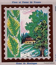 árboles OLMO EN MONTAÑA Yt2385 FRANCIA FDC Sobre Carta Premier día CEF