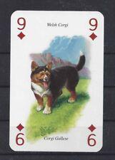One Single Severino Baraldi Art Europe Playing Card Dog Cardigan Welsh Corgi