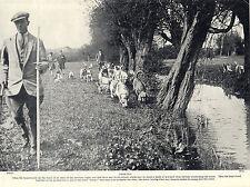 OTTERHOUND PACK ON HUNT OLD ORIGINAL DOG PRINT FROM 1934