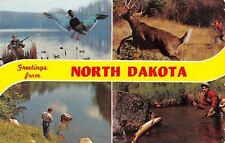 Cando ND Cancel~Scenes of Wildlife~Fishing & Hunting 1967 Banner Greetings