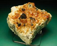 Rare A+ Spessartine Garnet & Smoky Quartz Crystals on Matrix Fujian China