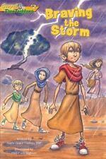 Braving the Storm (Paperback or Softback)