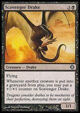 Scavenger Drake EX/NM Shards Of Alara MTG Magic Cards Black Uncommon Pump