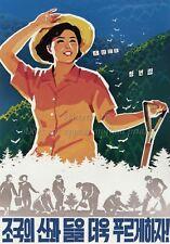 North KOREA Anti-American Propaganda Poster Print AGRICULTURE A3+ #D072
