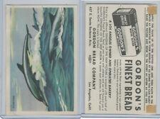 D39-13 Gordons Bread, Denizens Of Deep, 1950's, Porpoise