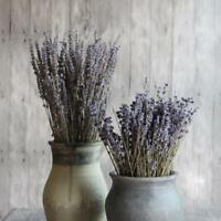 Flower Bouquet Bunch of Natural Party Decoration for Home Wedding Dried Lavender