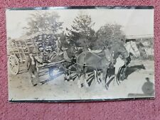 EARLY 1900s HORSE AND CART PHOTO POST CARD