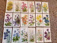 Alpine Flowers (1913) Wills Cigarette Cards - Complete Your Album