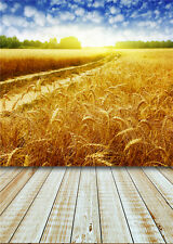 Wheat Field Photography Backdrop Vinyl Photo Prop Studio Scenic Background 5x7FT