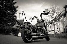 Sissybar Softail SLIM Harley Davidson®, Edelstahl Schwarz Matt beschichtet