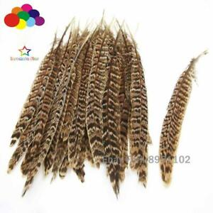 10-25cm/4-10inch Premium Diy 10-100PCS Natural Female Pheasant Tail Feathers
