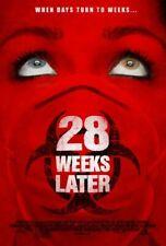 28 Weeks Later (Einzel Seiten) Regulär) (2007) Original Filmposter