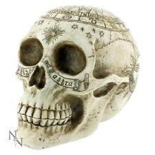 More details for astrological skull