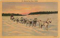 Siberian Dog Team Alaska Postcard 1941 - US Navy Censor