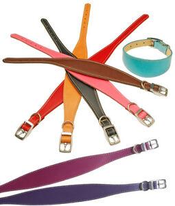 "Whippet Collar 12"" - 14"" UK Handmade Quality Leather Padded Dog Collar"