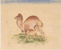 Hand Painted Indian Miniature Painting Animal Camel Nature Finest Art On Paper