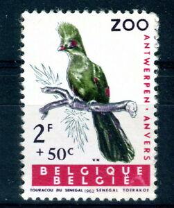 1962 Belgium 2f50 Keel Billed Toucan, Birds of Antwerp Zoo UM
