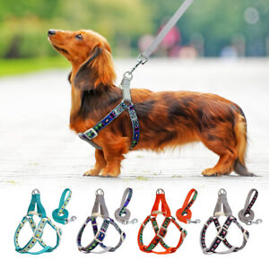 Small Dog Harness and Leash Set Reflective Step in Puppy Control Walking Vest