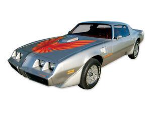 1978 1979 1980 General Motors Pontiac Firebird T/A Trans Am Decal Stripe Graphic