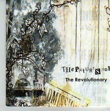 (CU759) The Picture Show, The Revolutionary - 2006 DJ CD
