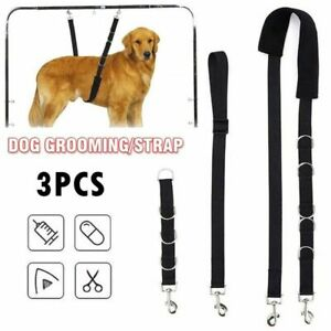 Cat Traction Belt Bathing Grooming Belly Dog Harness Dog Collar Pet Supplies