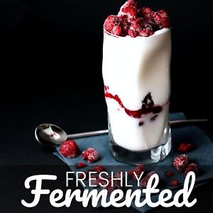 Certified Organic French Set Yoghurt Starter Culture