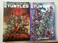TEENAGE MUTANT NINJA TURTLES #100 A+B SET WACHTER KEVIN EASTMAN NM IDW TMNT