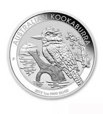 Australien 1 Dollar Kookaburra 1 oz Silber 2019 in Originalkapsel - ab Lager