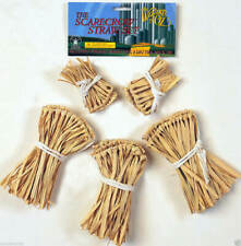 Wizard of Oz Movie Scarecrow Straw Set Costume Accessory Licensed