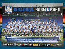 ✺New✺ 2015 CANTERBURY BULLDOGS NRL Poster - 42cm x 29.5cm