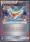 Eclat de Victoire-N&B:Tempête Plasma-130/135-Carte Pokemon Neuve Française