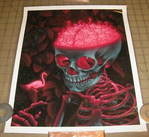 "BIRD BRAIN Flamingos Casey Weldon 7/75 Signed/Numbered 11x14"" Color Print w/COA"