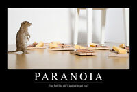 Paranoia Funny Demotivational Poster 12x18 Inch