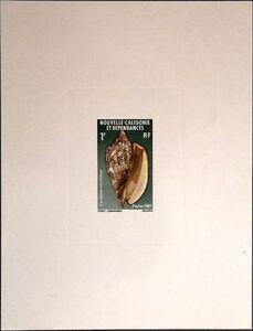 NEW CALEDONIA NEUKALEDONIEN 1981 669-71 DELUXE Meeresschnecken Shells Sea Life