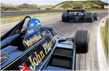 Wingman, Ronnie Peterson, Andretti, campeón mundial, Lotus 79, Zandvoort