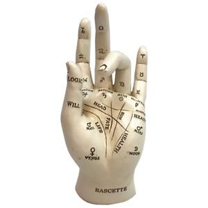 PALMISTRY 17.7CM FIGURINE CHIROMANCY FORTUNE TELLING HAND ORNAMENT